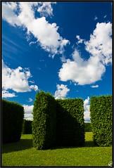 Blue and green (Mirek028) Tags: blue sky green cemetery grass clouds pentax hedge varadin k200d justpentax pentaxart