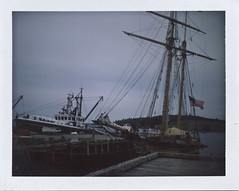 Pride of Baltimore II (Batara) Tags: color colour film nova analog photography ship fuji pride baltimore atlantic pack maritime automatic land instant manual scotia 230 2010 lunenburg peelapart fp100c batara
