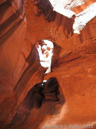 Potholes in the Golden Cathedral in Neon Canyon, Grand Staircase-Escalante National Monument, Glen Canyon Recreation Area, Utah