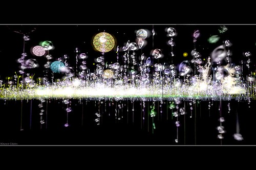 Au milieu des lucioles... le jardin nocturne