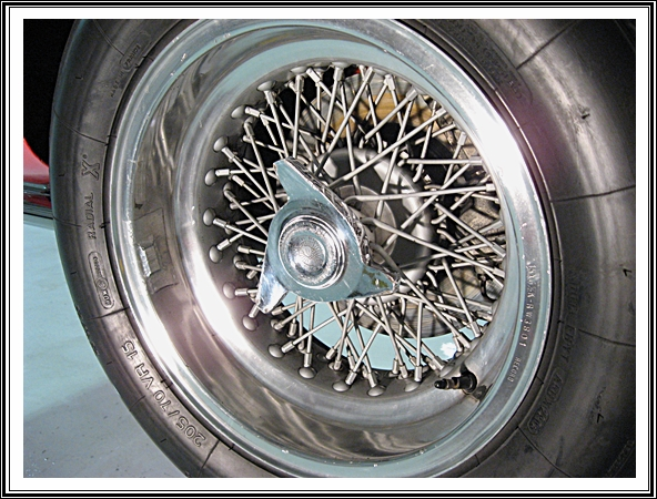 Borrani Wheels
