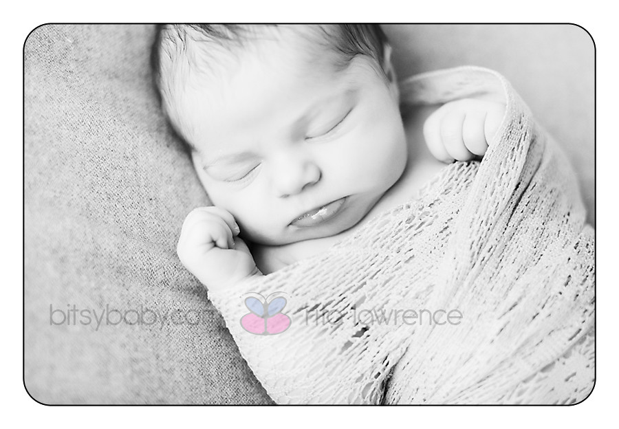 Bitsy Baby Newborn Photographs