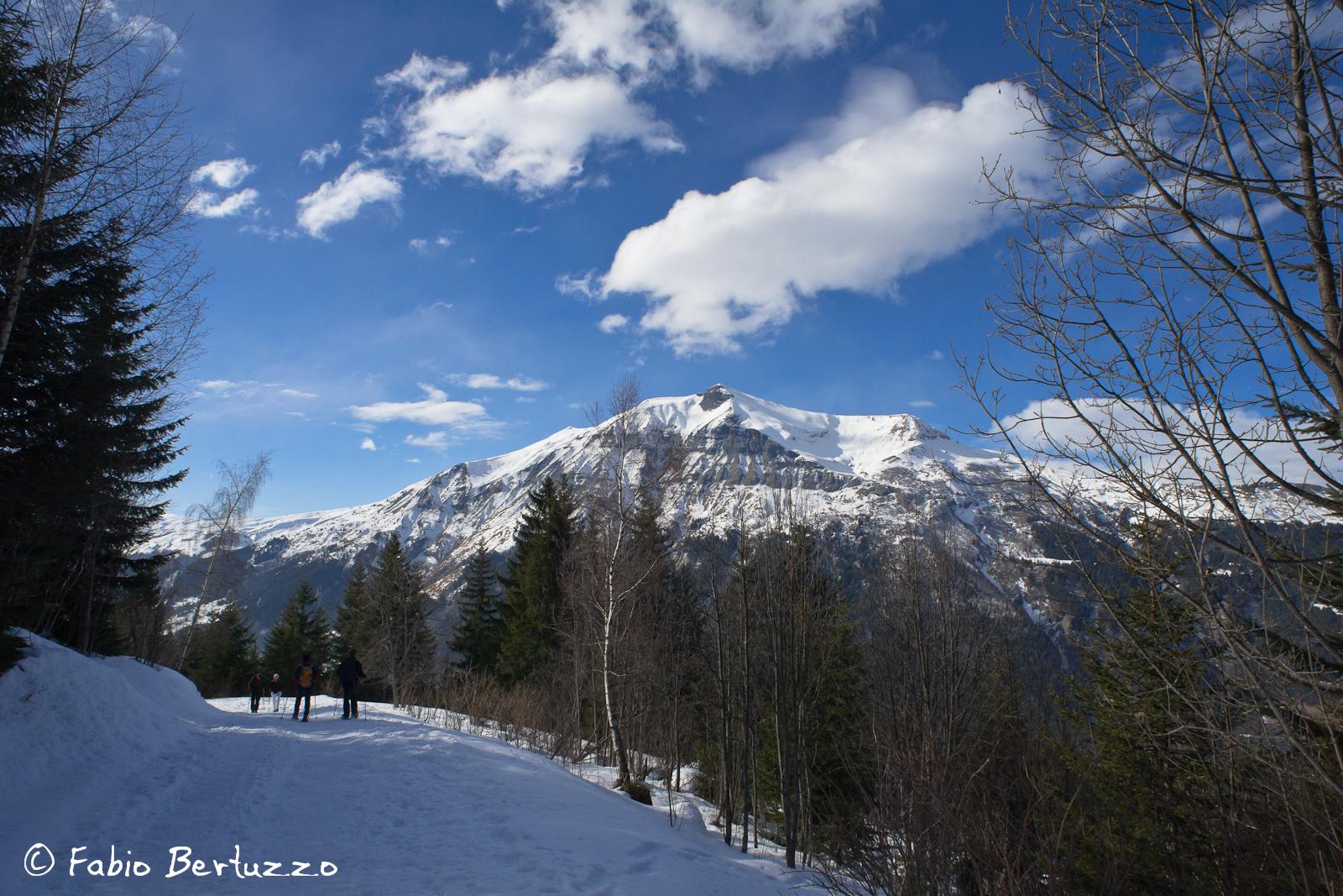 Mont Jolie
