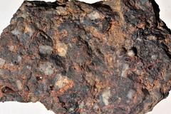 Andesite Porphyry   Weeks   Nevada   USA   6730.JPG (ShutterStone.com) Tags: usa nevada weeks andesiteporphyry 6730jpg