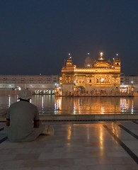 Seek at the Golden Temple Amritsar (OliviaBlockeyPhoto) Tags: morning travel india colour building water architecture night gold peace religion seek punjab amritsar goldentemple
