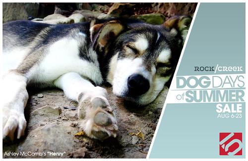 DogDays2010