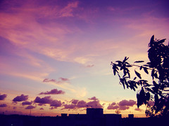 Aquarela (AnaElisa) Tags: sunset sky colors clouds contraluz cores purple cu prdosol nuvens violeta entardecer crepsculo catchycolorspurple