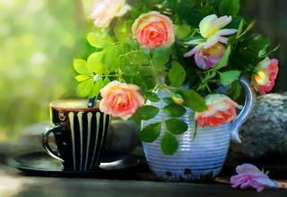 Summer roses in blue pot.