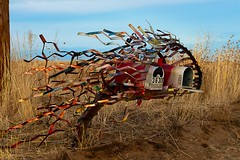 """You've got airmail!"" (Paul L Dineen) Tags: mailbox art weldcounty colorado creative artistic wind breeze"