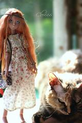 IMG_7987 (Cleo6666) Tags: lana lillycat cerisedolls marron glacé bjd doll chibbi