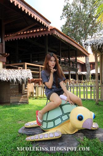 petit club med turtle