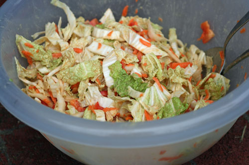 CSA Day: Asian Napa Cabbage Slaw with Peanut Sauce Recipe