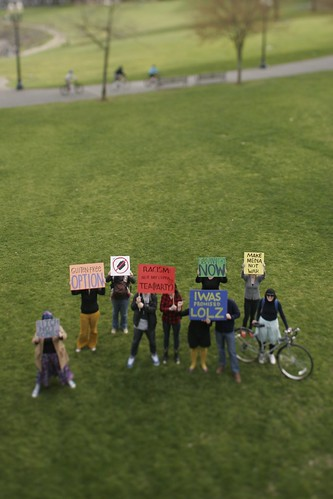 a photograph of protesters in a park. The photograph makes it look like they are miniature figurines