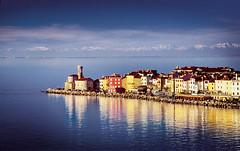 Piran and Alps (Turistino zdruenje Portoro) Tags: seagulls beach vineyard holidays mediterranean fireworks slovenia grapes piran slovenija portoroz pirano portorose tartini postojnacave tartinisquare sloveniancoast slovenianistria