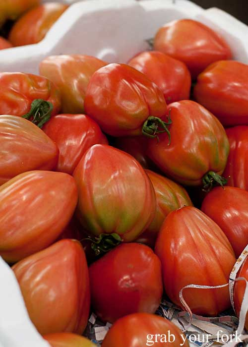 ox heart tomatoes