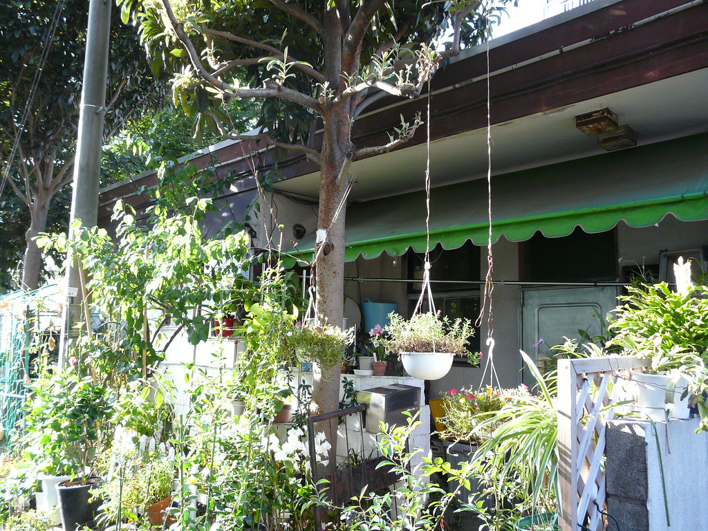 Curbside Assemblage with High Hanging Pots