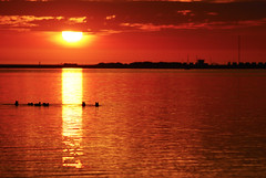 Golden Hour... (++NiklasPhotography++) Tags: light sunset red sea summer sky orange sun black nature netherlands beauty clouds golden nikon holidays europa europe silhouettes ducks himmel hour friesland mee ijsselmeer 2010 niederlande makkum d60 niklas94