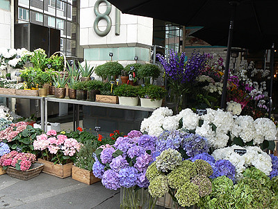 flowers at Bibendum.jpg