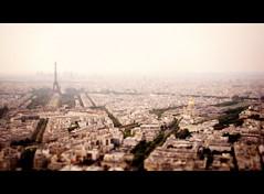Paris en rose (Bjrn Giesenbauer) Tags: city paris france tower tour view eiffel ladfense tourmontparnasse faketiltshift