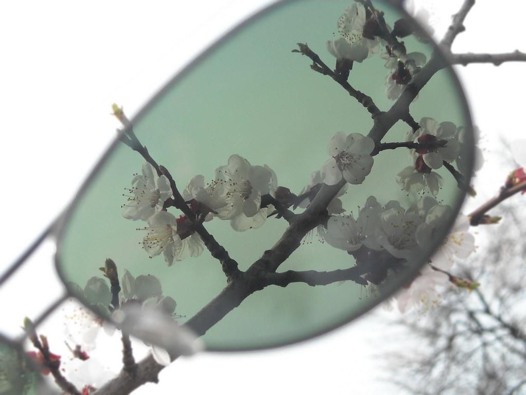 Through sunglasses