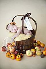 fall is in the air (Heidi Hope) Tags: autumn sleeping summer portrait baby flower fall vintage garden studio season heidi photography hope bucket basket purple massachusetts newengland naturallight orchard rhodeisland newborn apples newbornphotographer heidihope