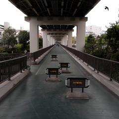 Tatekawa Riverside Park 01
