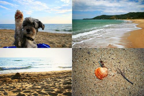 Vacanze al mare nel Cilento: spiaggia di ogliastro marina
