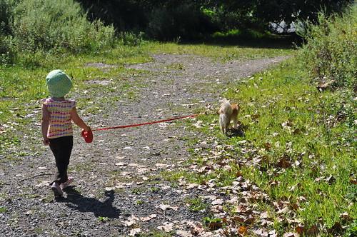 First Solo Dog Walk