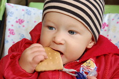 Biscuit (odeku03(Children and others)) Tags: park boy red summer portrait food colors face cookies childhood kids children outdoors eyes day child hand bright little young biscuit con littleface familygetty2010 gettyimagesrussiaq2