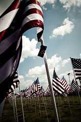 Flags (sabroso10) Tags: blue sky nikon memorial tx 911 11 flags september d90 killleen