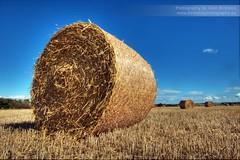 Harvest (~Glen B~) Tags: field farm harvest bluesky hay bale summersend sunnyday