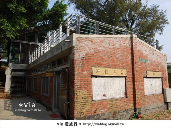 【彰化】彰化藝術高中~教室與森林結合的美麗校區23