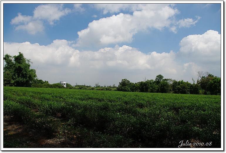 美好農場 (3)