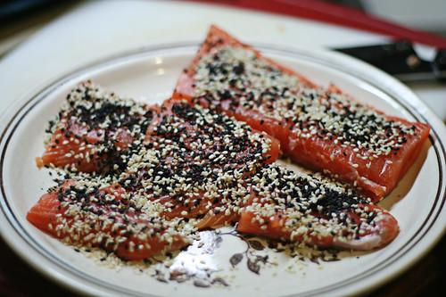 salmon!