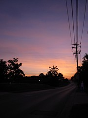 city sunrise in september 3 (wintersoul1) Tags: road street pink trees sky orange clouds sunrise dawn angle ghost telephonewires