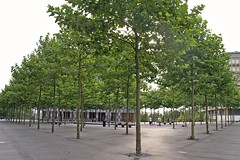 Place de l'Europe, Luxembourg (honeylotus) Tags: trees luxembourg luxembourgcity placedeleurope