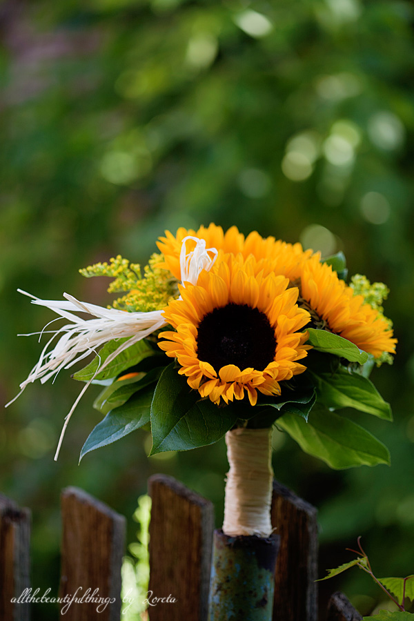 Sunflower  ♥