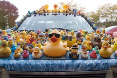 Duck Mobile 3 (Keppyslinger) Tags: car wisconsin madison rubberducks duckmobile