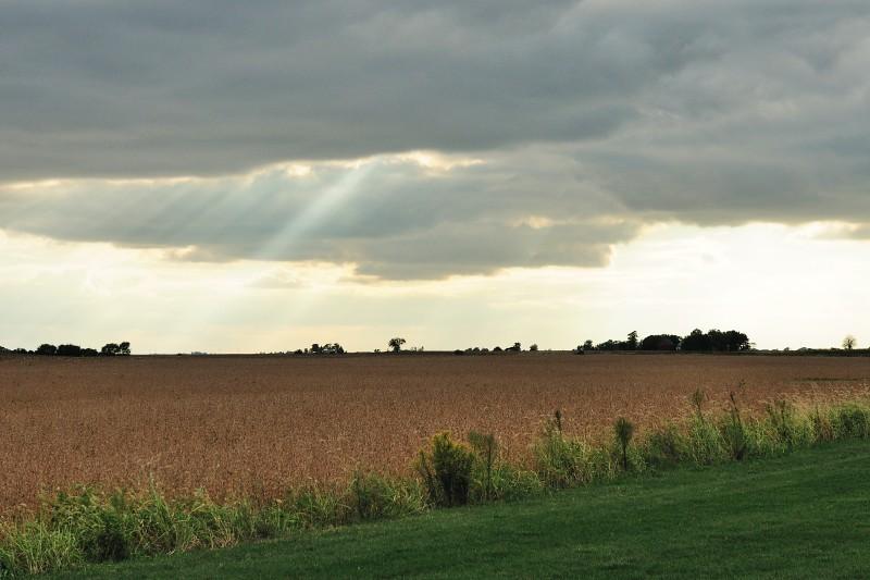 10.09.26 - Sun Beams
