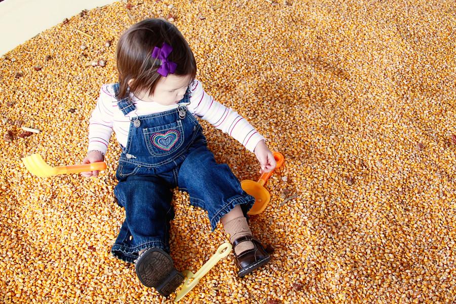 Rader farm 2010 (33))blog