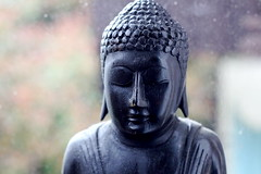 Buddha face grain