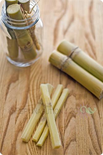 Tebu - Sugarcane