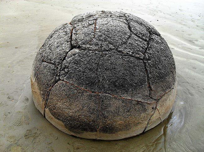 من الصخور انها تشبه السلحفاة، سبحان الله !!! 5043575868_cfa446a06