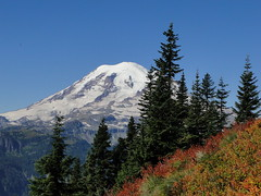 Rainier with fall colors on upper Shriner Peak trail.
