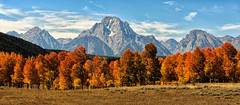 Autumn Morning - Above Oxbow Bend (Jeff Clow) Tags: autumn fall fallcolor mountmoran grandtetonnationalpark mtmoran jacksonholewyoming gapr flickrdiamond