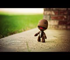 Sackboy (isayx3) Tags: toy nikon character sony 85mm nikkor f18 studios d3 ps3 plainjoe littlebigplanet sackboy isayx3 plainjoephotoblogcom