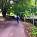 Cotswolds Yurt - Walk Into Oakridge