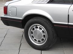 Mustange back side (Rengq8) Tags:              zizooo