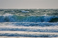 North Sea waves (The Wolf) Tags: sea storm beach water terschelling surf waves noordzee shore northsea splash senta