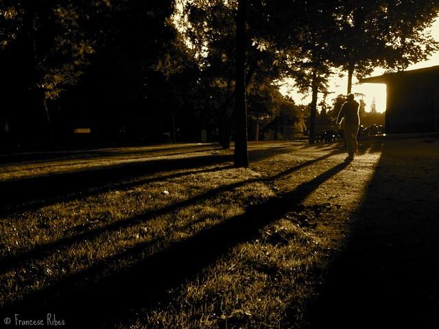 (176) Silueta con Sombra en Sepia
